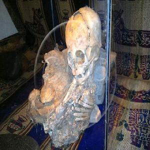 Extraterrestrial mummy found in cusco peru